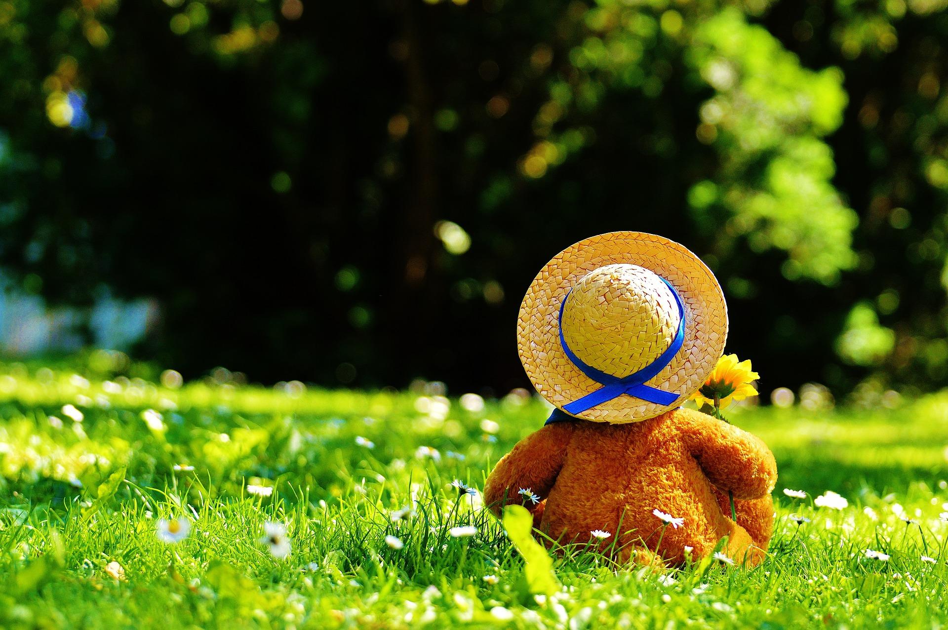 Teddy bear 797577 1920